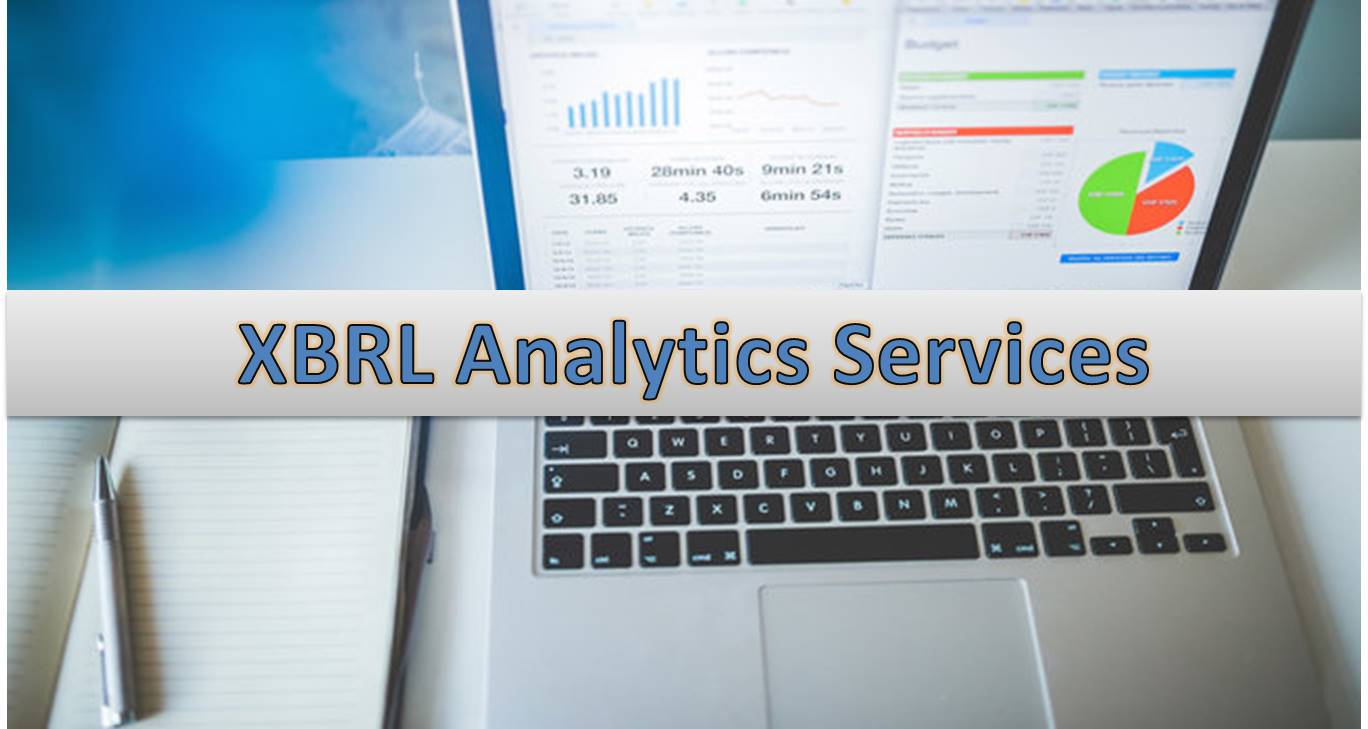 XBRL Analytics Services